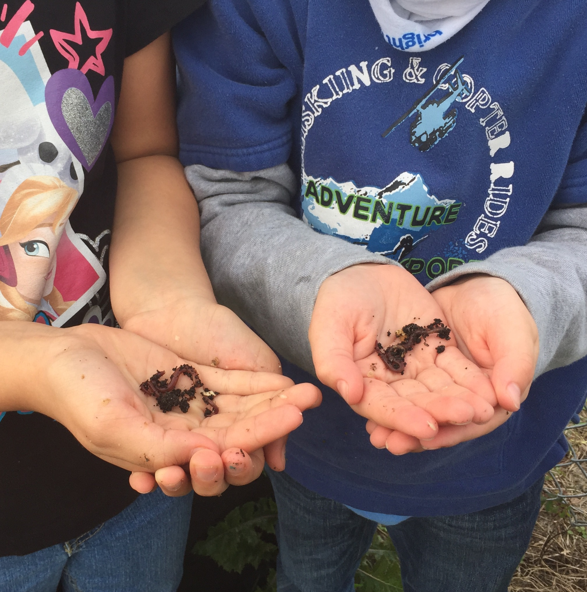 students holding dirt and worms