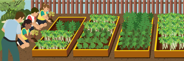 school-gardens-header
